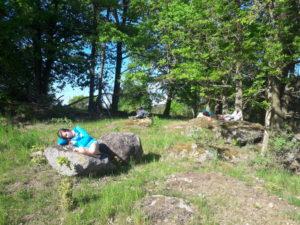 Kameny na pastvine